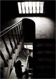 photos noir et blanc escalier par Olga Loiko