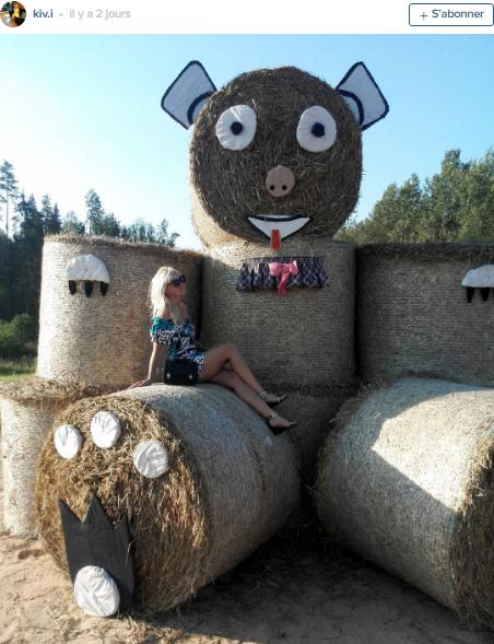 figure insolite de paille dans les champs fête de récolte