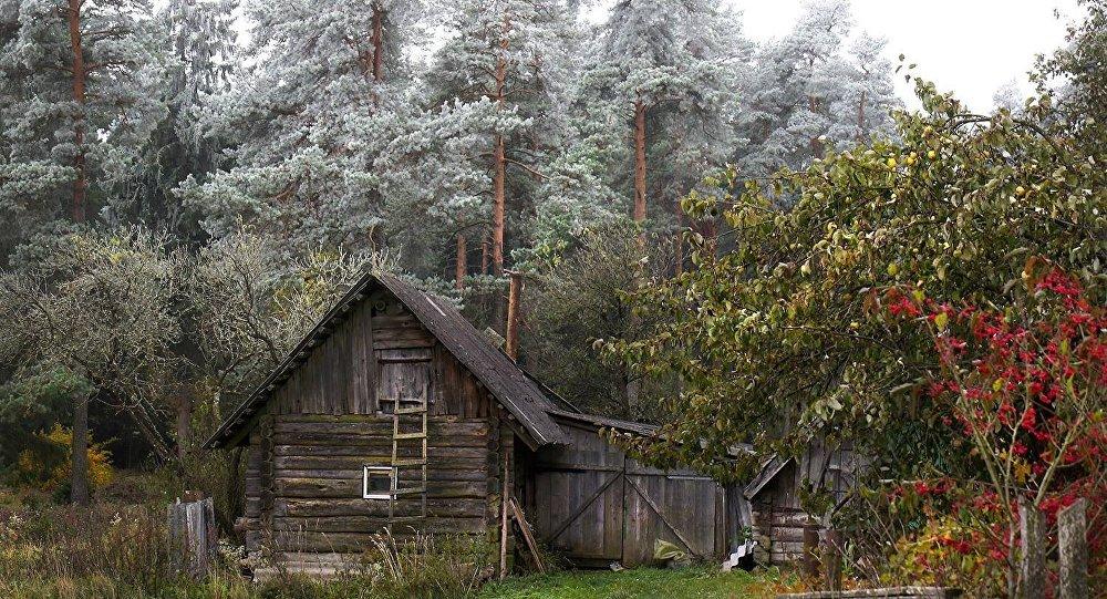 hiver-et-automne-sur-la-meme-photo-belarus-octobre