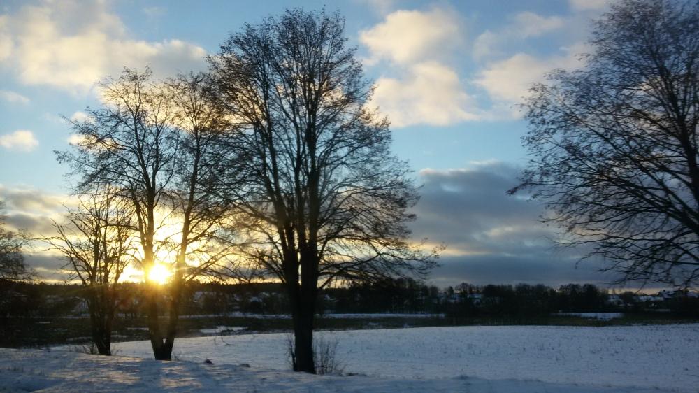 Photo d'hiver bélarus