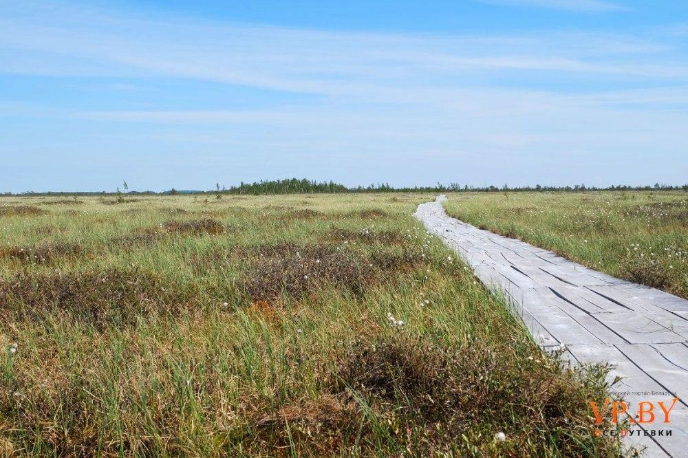 Sentier écologique
