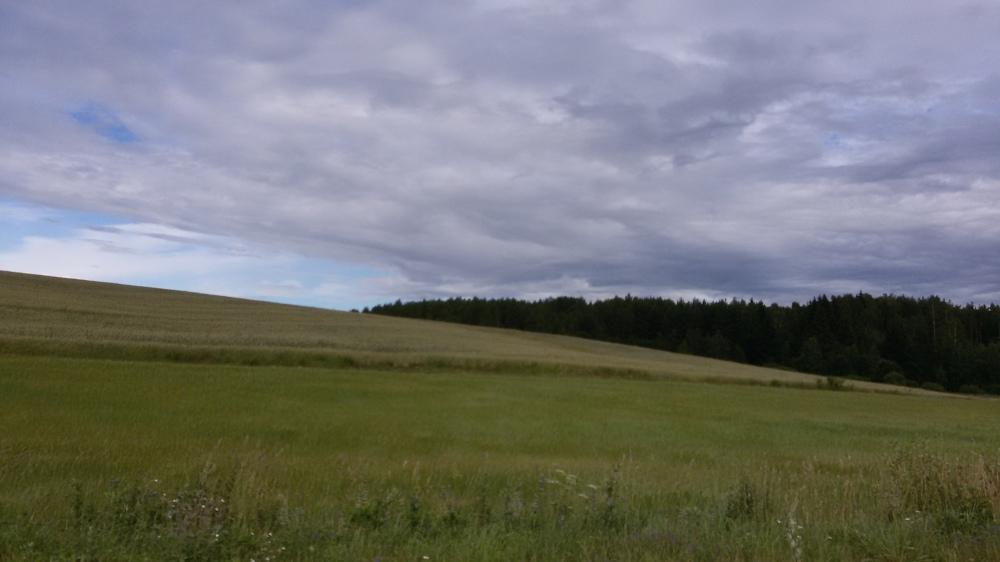 Nature biélorusse paysages