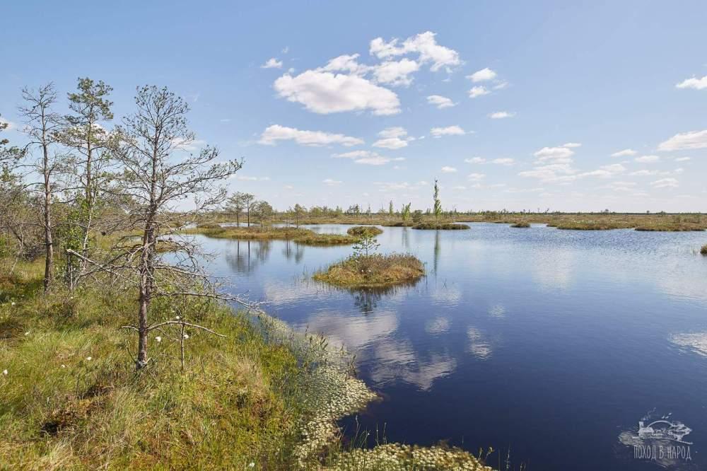 Tour du marais biélorusse